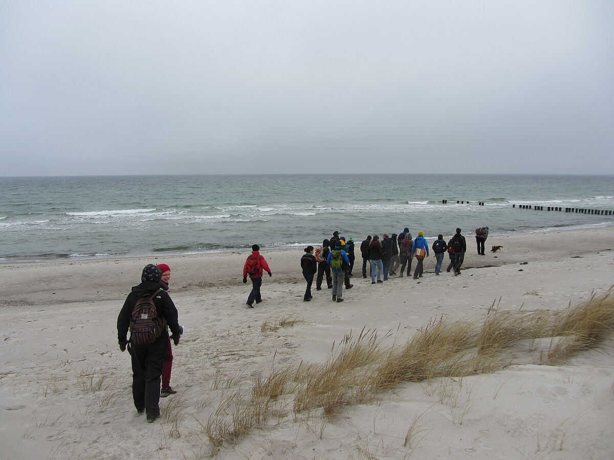 Walking now on the beach´s edge